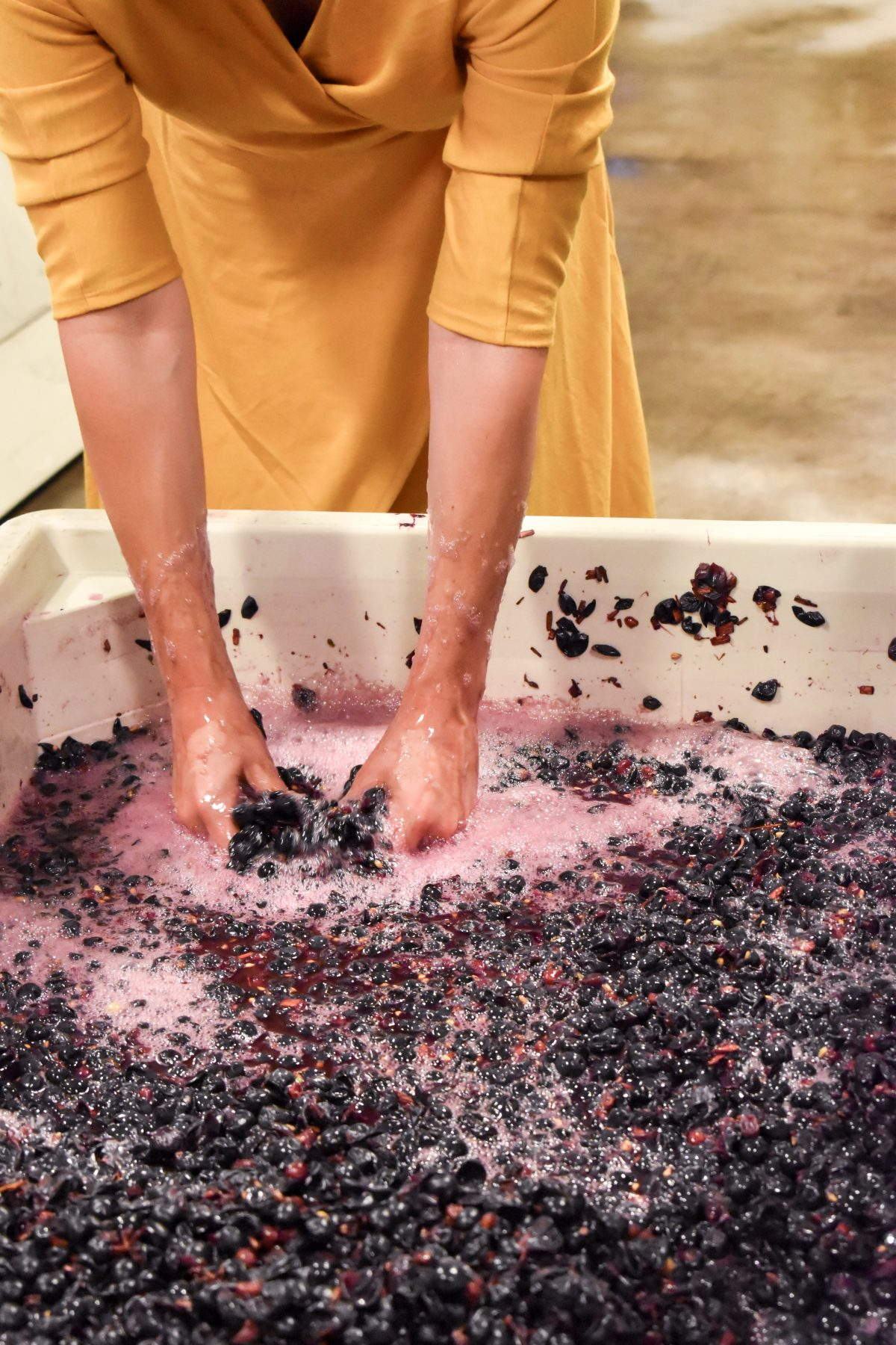How to Punch Grapes - Winemaking